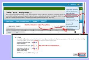 CourseSites Assignment